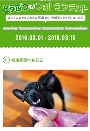 FullSizeRenderpp.jpg